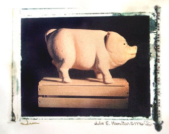 fine art photography animal print original 4x5 polaroid transfer Mr. Pig