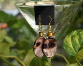 Brown Shell Earrings
