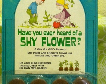 "Groovy 1970's ""Shy Flower"" Children's Story"