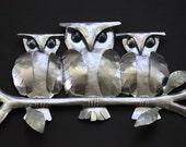 Triple owls on a branch