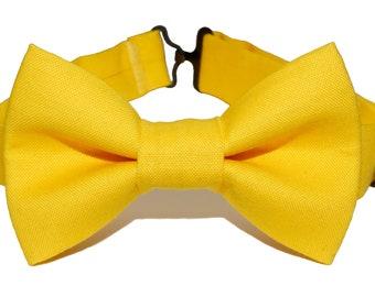 Bow Tie - Yellow Bowtie