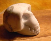 Skull  - White Jasper -   Skull Halloween -  Miniature Dollhouse Sized - 1/12th Scale