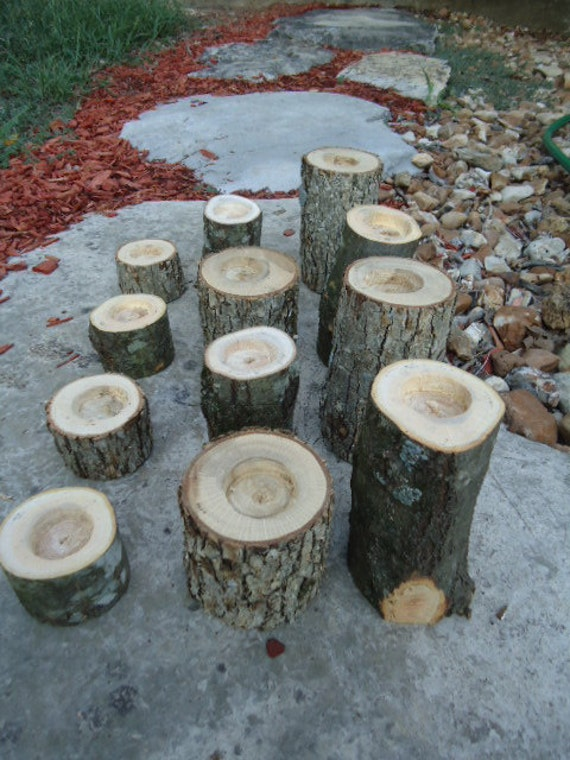 12 Rustic tree branch candle holders sticks for votive candles, weddings, cabins, decoration, decor, natural tree branch,