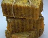 Pumpkin Spice soap - Warming