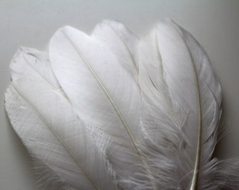 "Off White or Bridal Ivory Goose Nagoire Feathers, 10 Loose Feathers / 4""-6"""