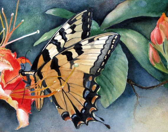 """Archival Print / From Original Watercolor / Of A Monarck Butterfly / Shades Of Orange / 8.5""""x11"""""""