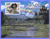 Rainbow Bridge Pet Memorial for Your Pet Dog Cat or any Pet 8 X 10 Print