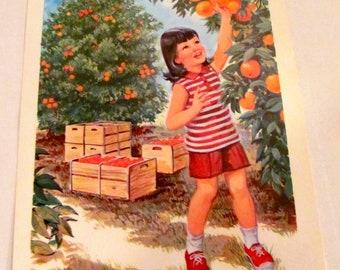 """Vintage """"Oranges""""  Poster"""