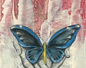 art print of a butterfly with open wings in a mans' hands. Red, light blue and  opalescent background with hands drawn over in ink.