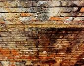 Muddy River Graffiti III -Urban Photography- Color 8x12 Print- Home & Office Decor