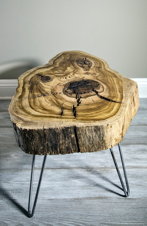 Sweet Gum Wood Slice Mid Century Modern Coffee Side Nightstand
