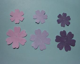 Pink & Purple Posies (596)