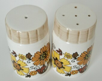 1970s Salt and pepper pots