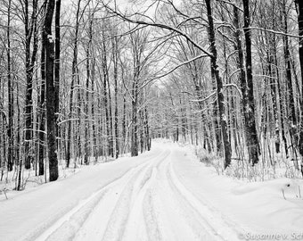 Black & White Photography, Winter Landscape, Snowy Road, Fine Art Print, Photo Cards, Wisconsin, Forest Road, Trees, Snow, White, Wall Decor