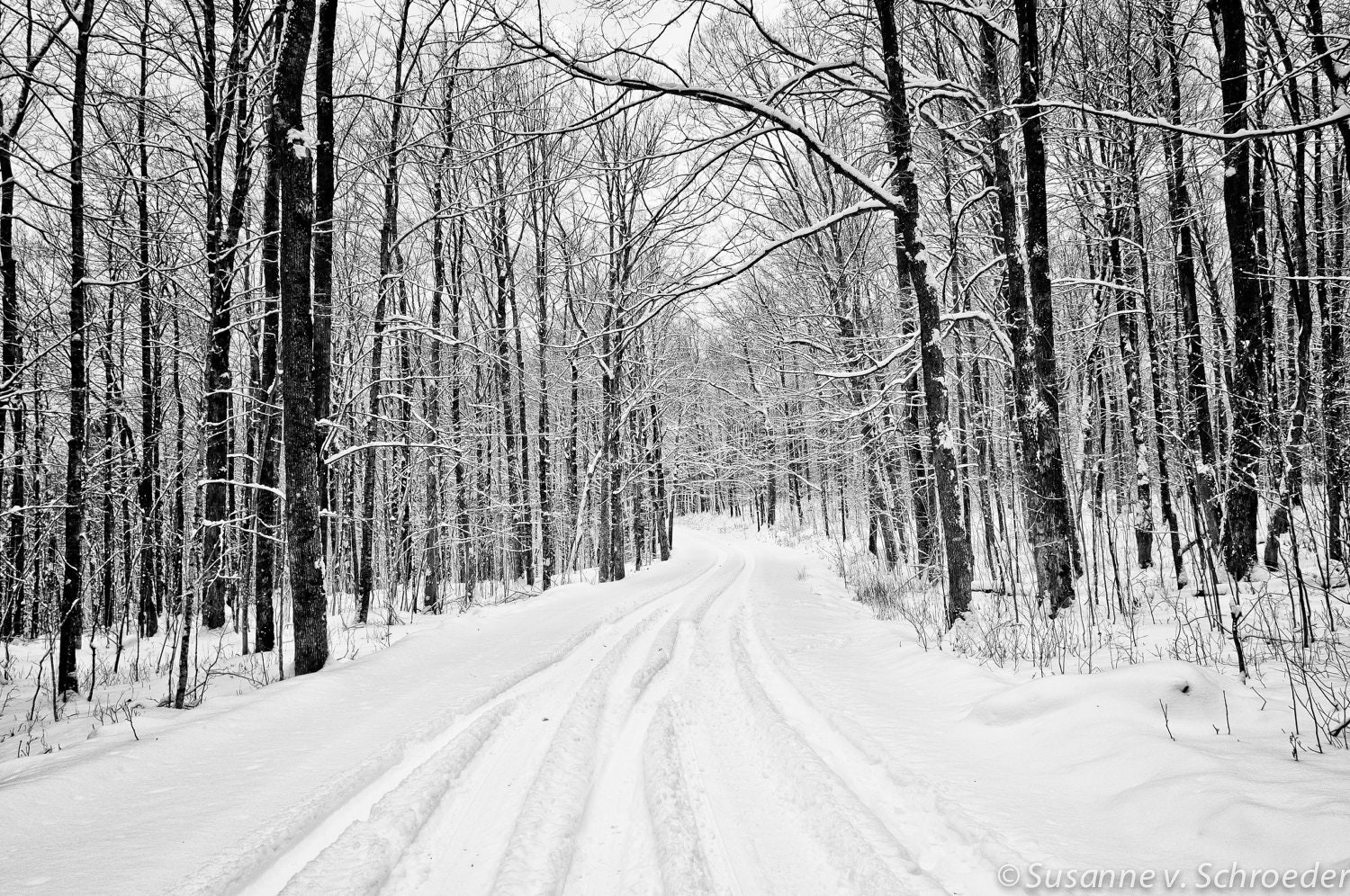 Black Amp White Photography Winter Landscape Snowy Road Fine