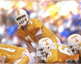 University of Tennessee Casey Clausen Art Lithograph