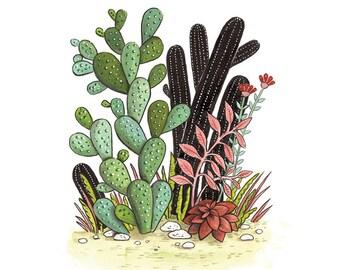 Motore di ricerca per piante grasse e succulente