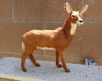 Female Mountain Deer Horn Taxidermy Figurine Furry Animal Replica Lodge Cabin Decor