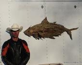 """Tuna Fish  """" Big Eye' Ocean Atlantic ' Wall Mounting' solid wood shag bark."""