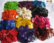 350 TAGUA slices wholesale lot Amazon Forest beads to make jewelry 12 colors
