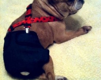 Designer Doggie Diaper Suspenders / Guaranteed to Keep a Diaper on Your Doggie