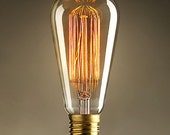 1 Antique vintage style edison bulb light bulbs 40w 60w 110v 220v radiolight T64 squirrel cage Filament