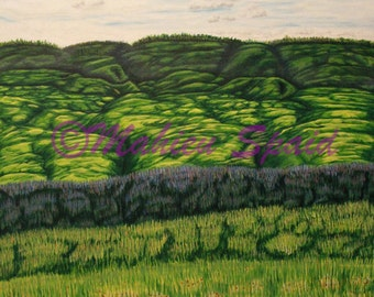 Original Acrylic Title: Hills of Poppies Under the Clouds