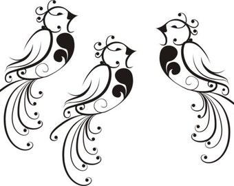 3 Beautiful Birds Set Package Decal Sticker Wall modern children boy girl
