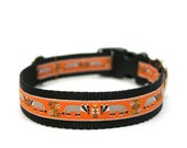 "1"" dog collar Honey Badger martingale or buckle collar"