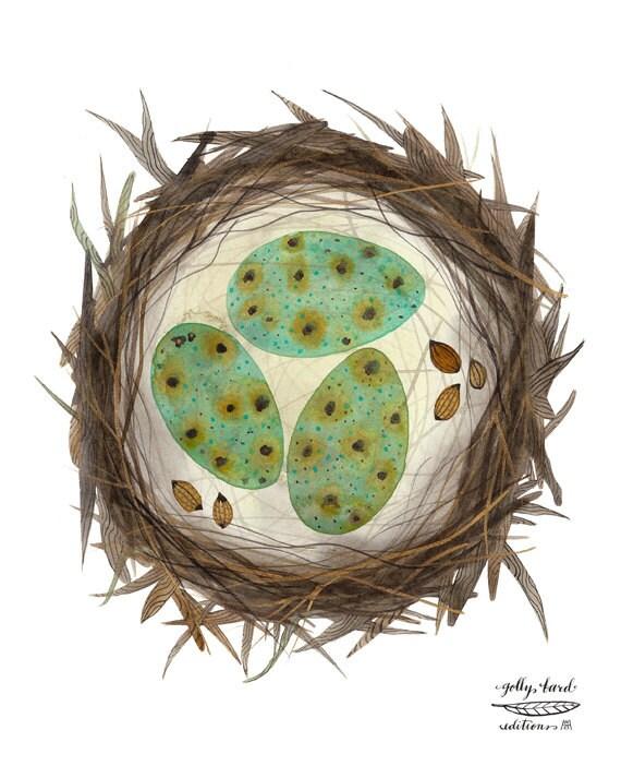 Bird Nest Print, giclee art print, bird art, birds eggs illustration, watercolor art print
