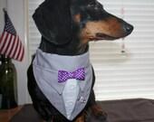Wedding Party Tuxedo Bandana Gray Suit Sz XS S M