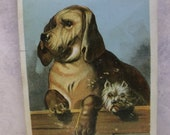 A Big Dog & A Tiny Dog - Best Friends - Victorian Card - 1800's