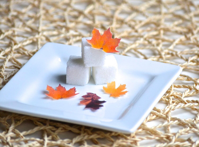 Wedding Cake Topper Itsy Bitsy Mini Edible Fall Leaves Set