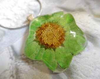 Lime Green Daisy Glass Flower Shaped Pressed Flower Pendant-Nature's Wearable Art-Symbol of Innocence,Loyal Love-Gifts Under 25