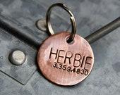 Custom Dog Tag / Pet ID Tag, Herbie, in 1'' Brushed Copper