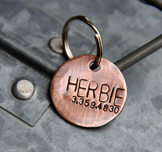 Custom Pet ID Tag, Herbie, in 1'' Brushed Copper