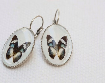 Butterfly Jewelry, French Ear Hook Earrings, Silver, Art Photo, Gift Boxed, Insect Earring, Nature Inspired Jewelry, Butterfly Earring