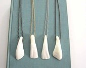 buffalo tooth necklace - real teeth jewelry - choose your chain finish / unisex mens necklace