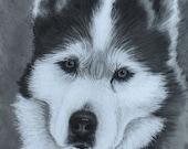 Custom Pet Portrait Charcoal Drawing Dog portrait Cat portrait 11x14