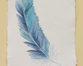 Feather original watercolour painting study illustration art drawing set collection