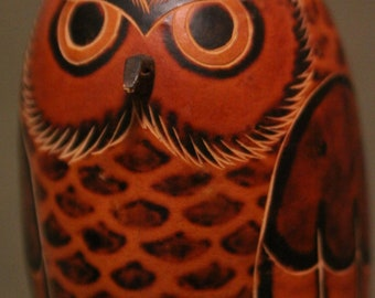 Gord Owl from Peru