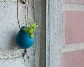 Wearable Planter No. 1, Teal