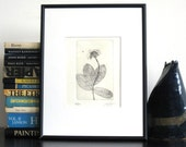 Original Etching Print FLY & FLOWER Lovely Bug Floral Branch Botanical Etching Printmaking Cottage Wall Decor Hand Pulled Print 8x5
