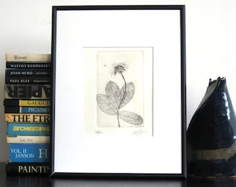 Original Etching Print FLY & FLOWER Lovely Bug Floral Branch Botanical Printmaking Cottage Wall Decor Etching Hand Pulled Print 8x5