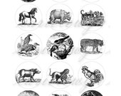 Animal Drawings Printable 1-Inch Circles / Bottlecap Images / Vintage Black White Engravings, Woodcuts, Lithographs / Digital Collage