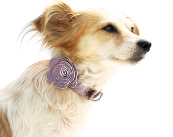 The Flower Child Dog Collar - Lavender