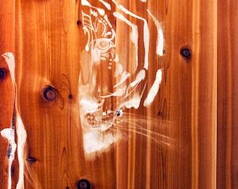 "print of  ""Tiger Peeking"" painting"