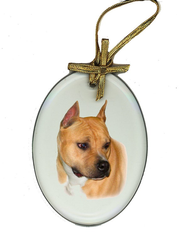 American Staffordshire Terrier Suncatcher Ornament Oval beveled Glass Dog