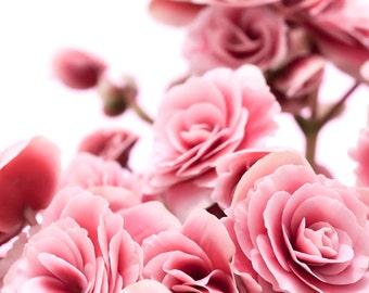 Pink flowers photograph Digital Download Fine Art Photography pink blossoms nursery art photo print