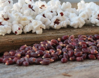 Ruby Red Gourmet Popcorn Kernels Southern Living Kansas Grown 1 pound